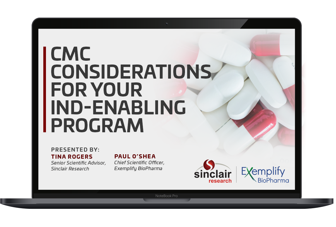 CMC considerations for your ind-enabling program