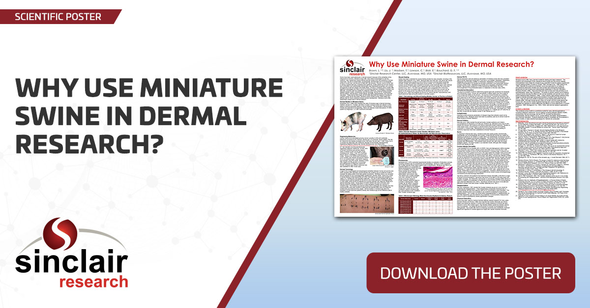 Why Use Miniature Swine in Dermal Research? - SciPos109
